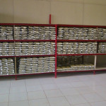 storage kratom